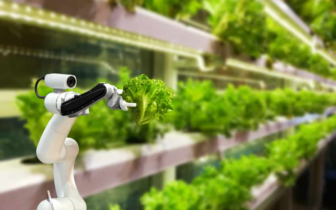 Sky-high expectations for vertical agriculture